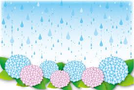 ☂梅雨におすすめの食養生☂